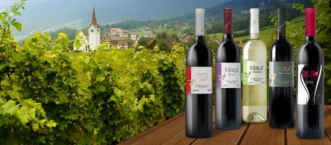 Вино и здраве. Винарска изба Румелия