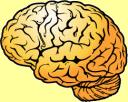 Виното влияе добре на нервната система, на мозъка