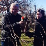 Агроном Георти Караилев и Цвета Костова